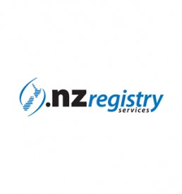 Webengin Domain Type DOT NZ
