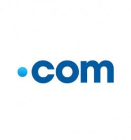Webengin Domain Type DOT COM