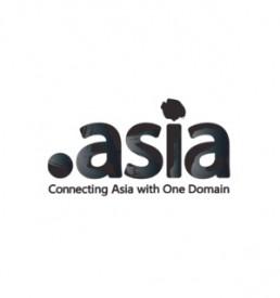 Webengin Domain Type DOT ASIA