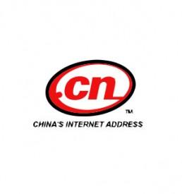 webengin-domain-name-type-dot-cn-1